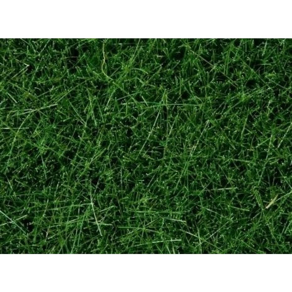 NOCH - 7080 - Wild Grass dark green, 6 mm 0,H0,TT,N