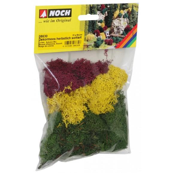 NOCH - 08630 - Lichen autumn mix, 35 g G,0,H0,H0E,H0M,TT,N,Z