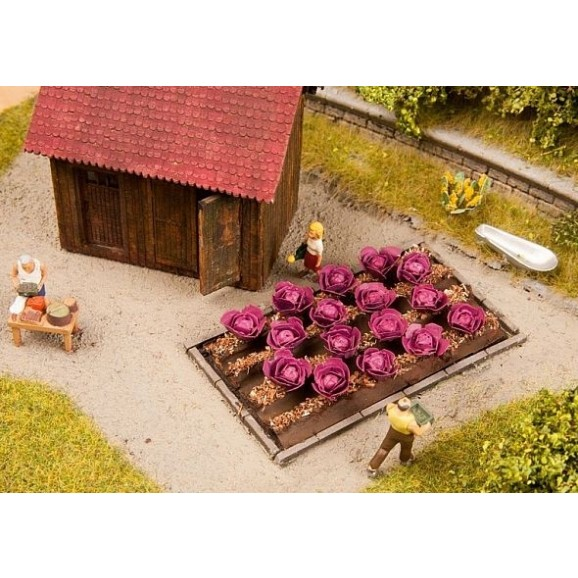 NOCH - 13218 - Red Cabbage 16 plants, 3 x 6 cm H0